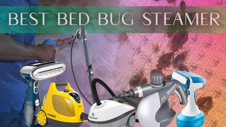 Best Bed Bug Steamer | Top 5 Steamers | Review & Buyer Guide