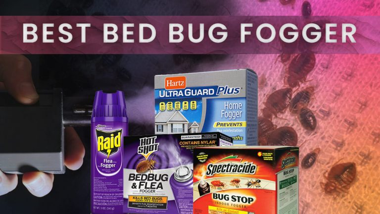 Best Bed Bug Fogger   Top 3 Foggers   User Review and Buyer Guide