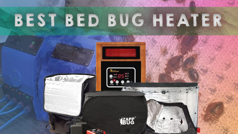 Top 5 Best Bed Bug Heaters | Review, User Feedback & Specialty