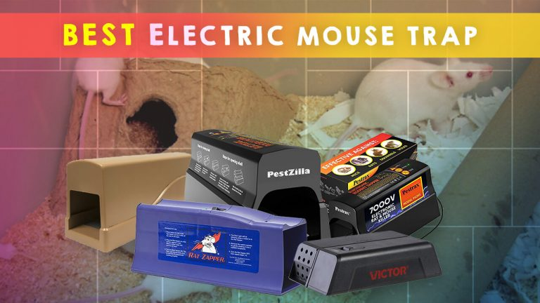Top 5 Best Electric Mouse Traps | How Do They Work | Buyer Guide