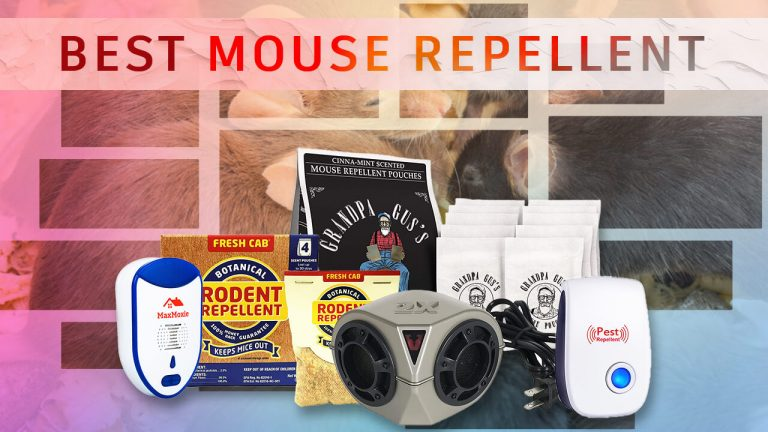 Top 5 Best Mouse Repellent | Best Ways to Get rid of Mice | Buyer Guide