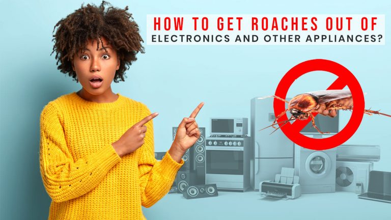 How to Get Roaches Out of Electronics and Home Appliances?
