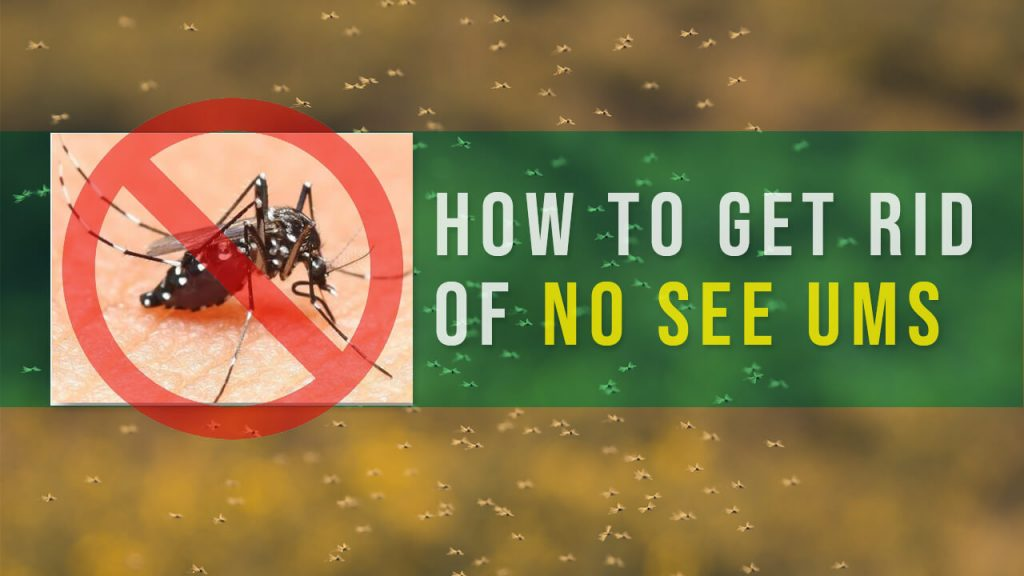 how to get rid of no see ums - best no-see-ums repellent