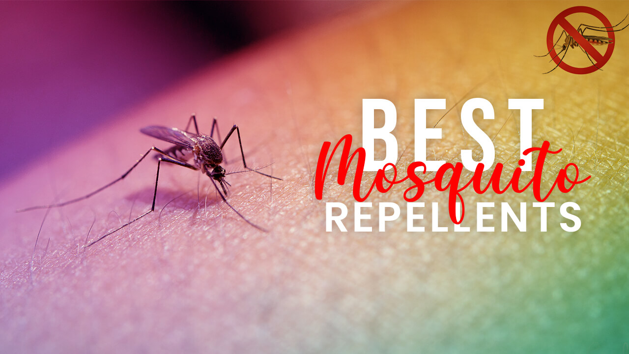 Best Mosquito Repellents - Zappers, Sprays, Traps, Foggers