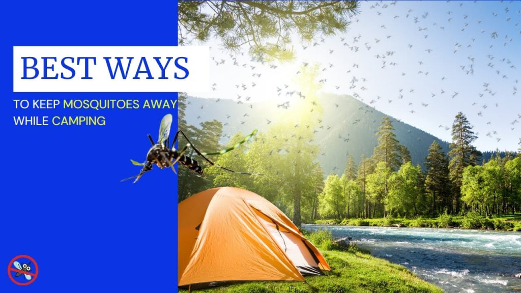 Effective ways to keep mosquitoes away while camping